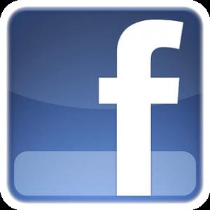 Fabbrica Europa on Facebbok
